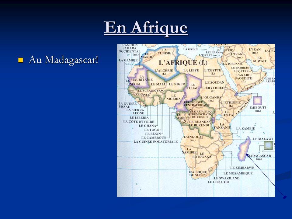 En Afrique Au Madagascar! Au Madagascar!