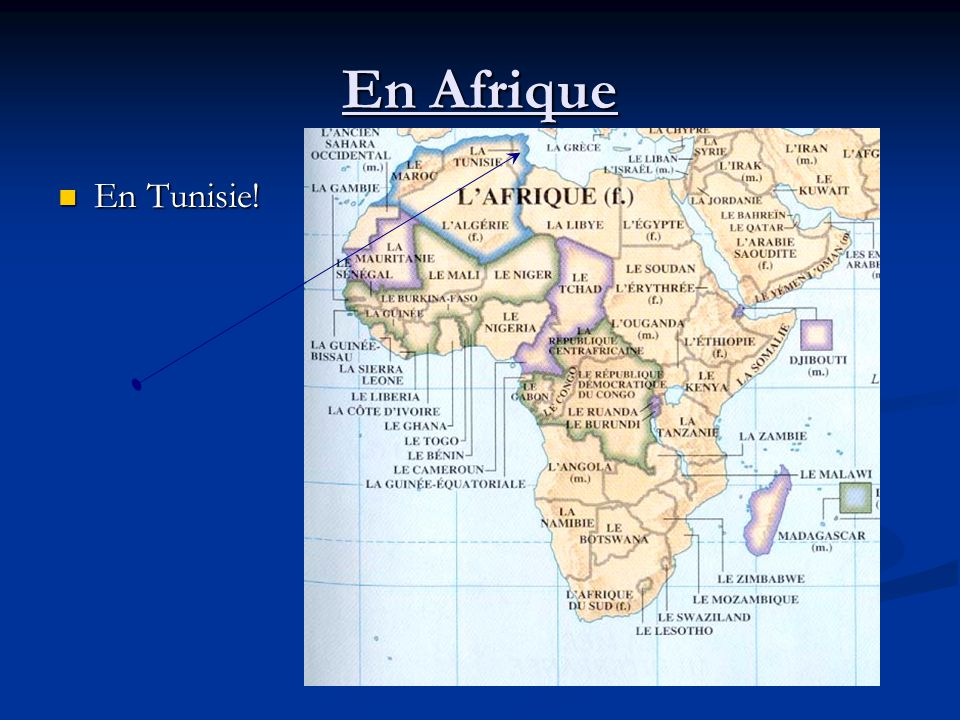 En Afrique En Tunisie! En Tunisie!