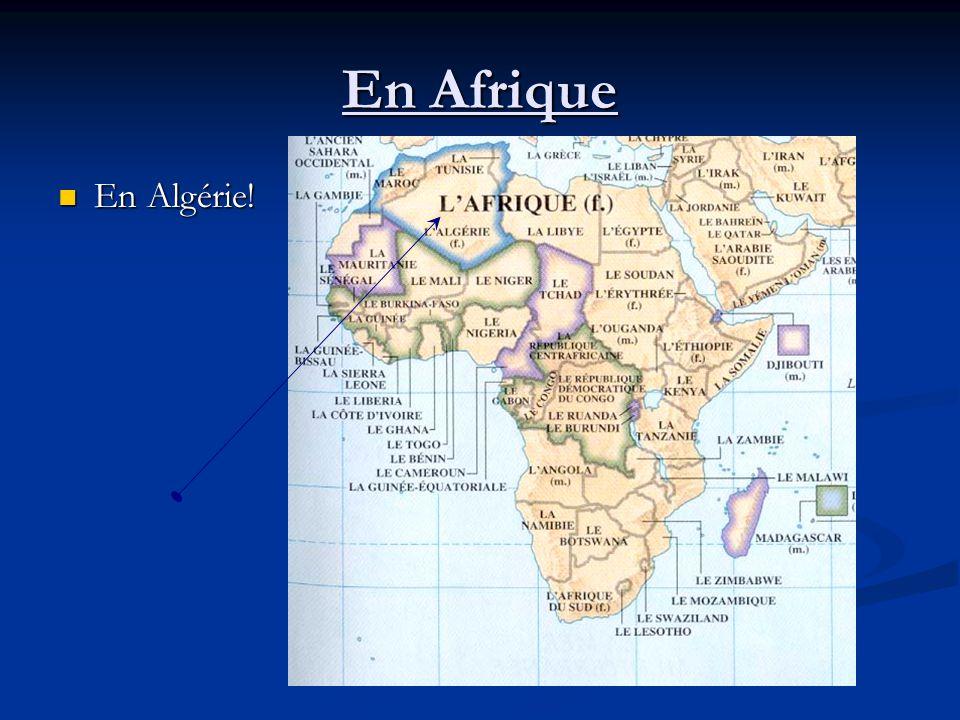 En Afrique En Algérie! En Algérie!
