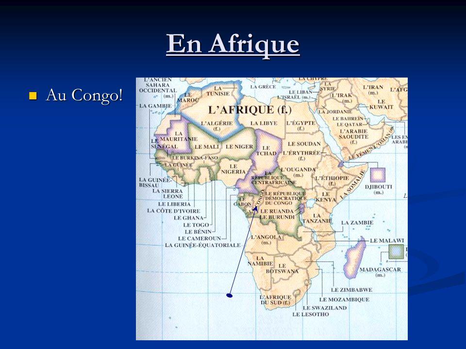 En Afrique Au Congo! Au Congo!