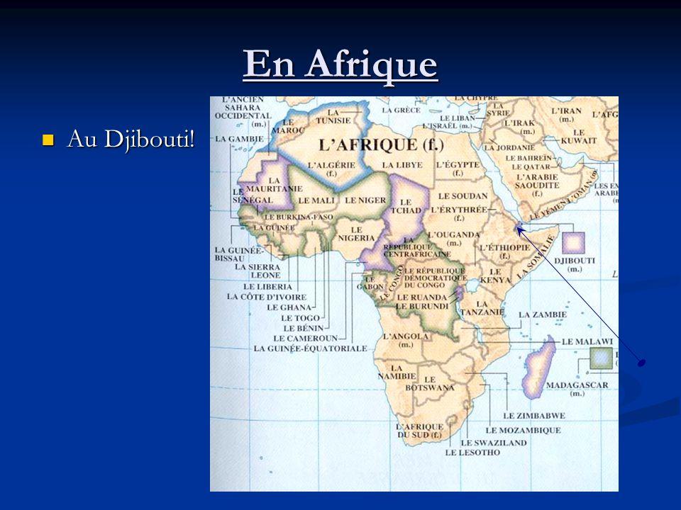 En Afrique Au Djibouti! Au Djibouti!