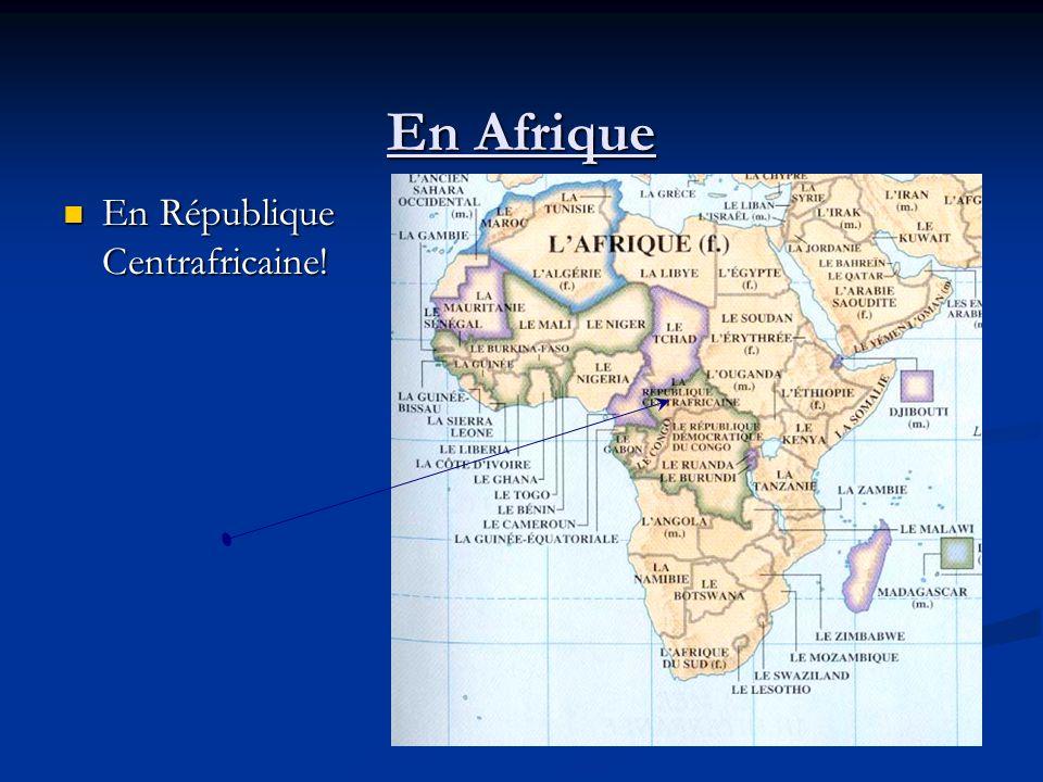 En Afrique En République Centrafricaine! En République Centrafricaine!