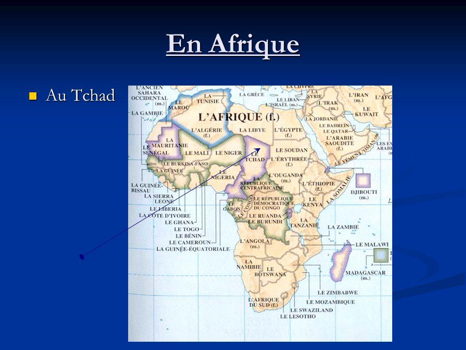 En Afrique Au Tchad Au Tchad