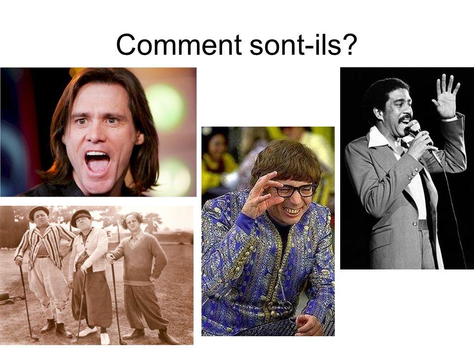 Comment sont-ils?