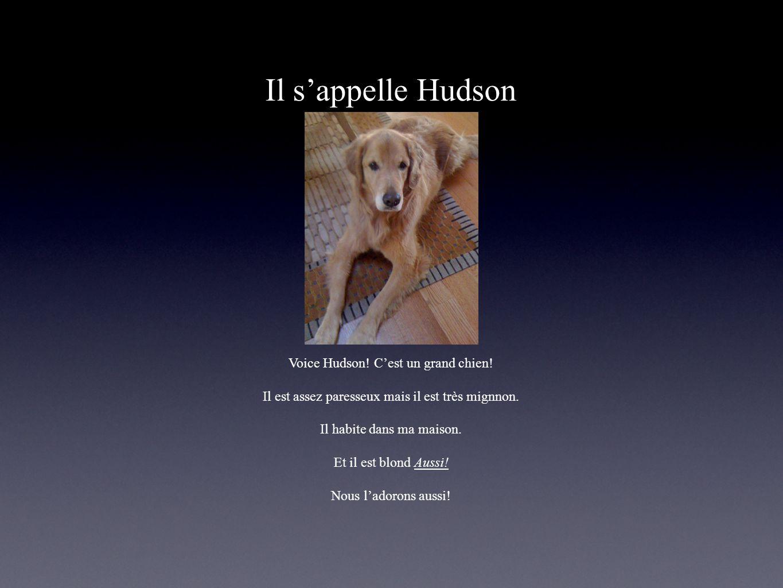 Il sappelle Hudson Voice Hudson! Cest un grand chien! Il est assez paresseux mais il est très mignnon. Il habite dans ma maison. Et il est blond Aussi