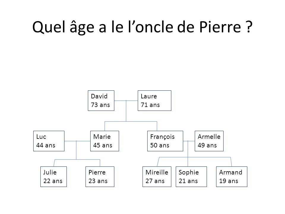 Julie 22 ans Armand 19 ans Sophie 21 ans Mireille 27 ans Pierre 23 ans Armelle 49 ans François 50 ans Marie 45 ans Luc 44 ans Laure 71 ans David 73 ans Quel âge a frère de Julie