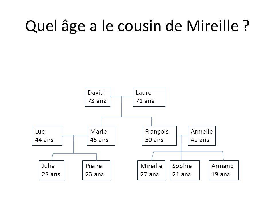 Julie 22 ans Armand 19 ans Sophie 21 ans Mireille 27 ans Pierre 23 ans Armelle 49 ans François 50 ans Marie 45 ans Luc 44 ans Laure 71 ans David 73 ans Quel âge a le loncle de Pierre
