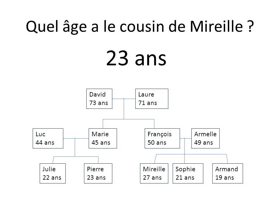 Julie 22 ans Armand 19 ans Sophie 21 ans Mireille 27 ans Pierre 23 ans Armelle 49 ans François 50 ans Marie 45 ans Luc 44 ans Laure 71 ans David 73 ans Quel âge a le loncle de Pierre .