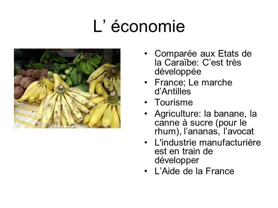 L économie Comparée aux Etats de la Caraïbe: Cest très développée France; Le marche dAntilles Tourisme Agriculture: la banane, la canne à sucre (pour