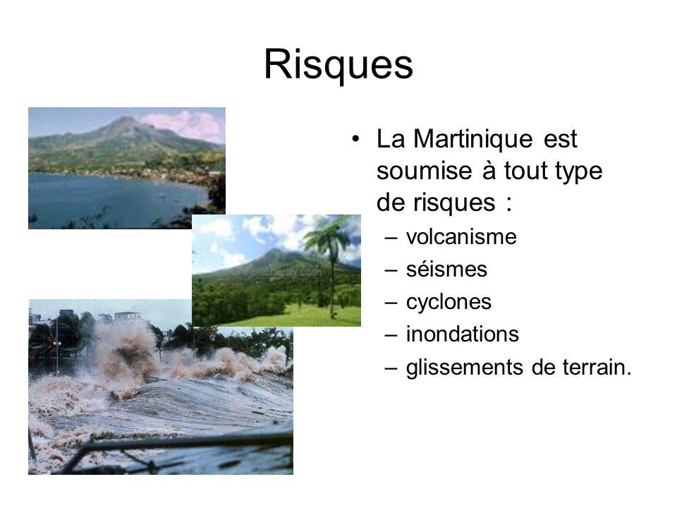 Risques La Martinique est soumise à tout type de risques : –volcanisme –séismes –cyclones –inondations –glissements de terrain.