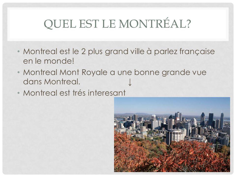 QUEL EST LE MONTRÉAL. Montreal est le 2 plus grand ville à parlez française en le monde.