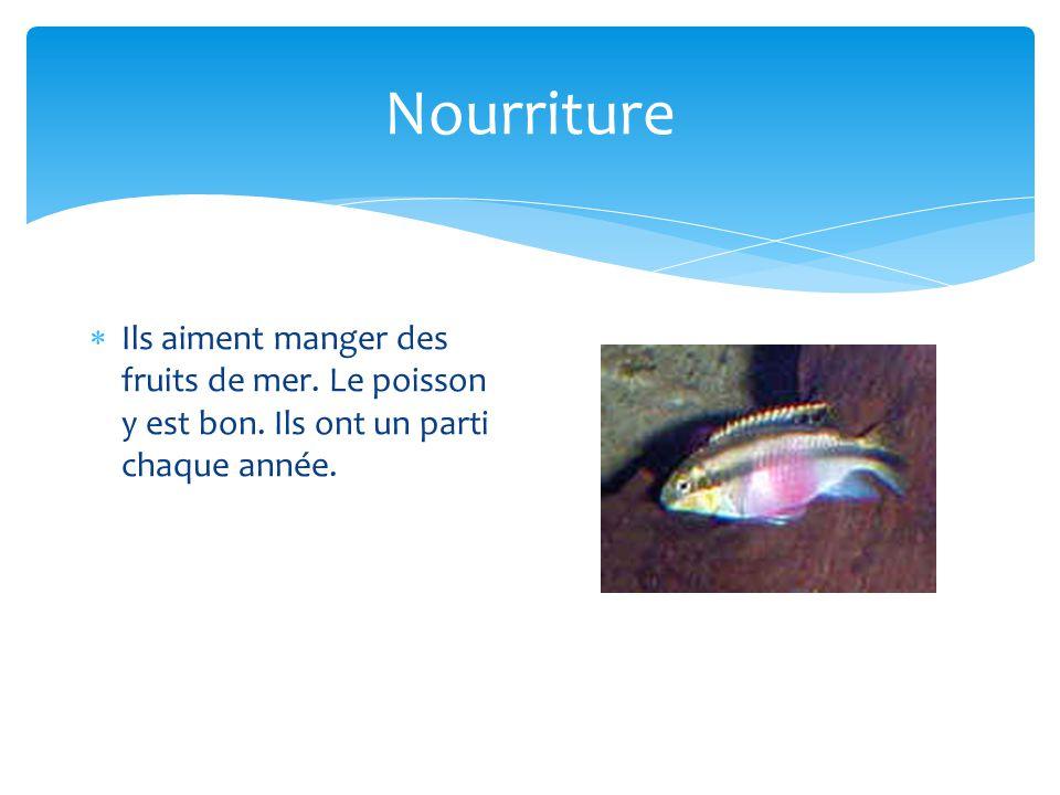 Nourriture Ils aiment manger des fruits de mer. Le poisson y est bon. Ils ont un parti chaque année.