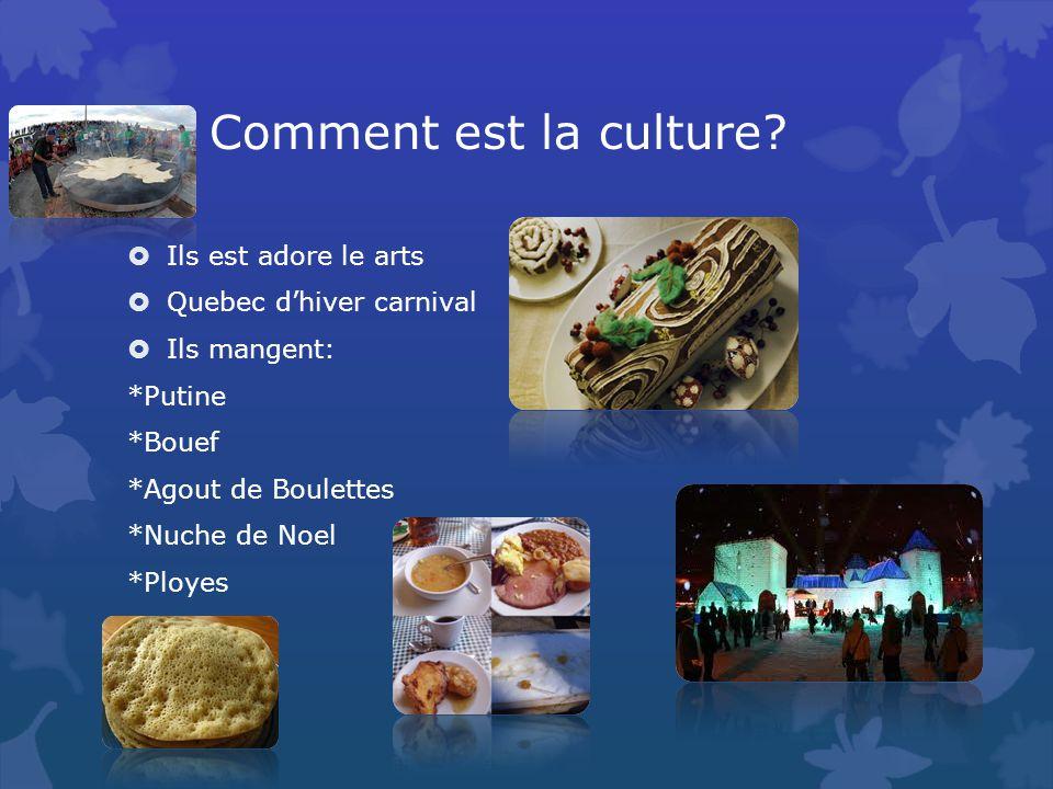 Comment est la culture.