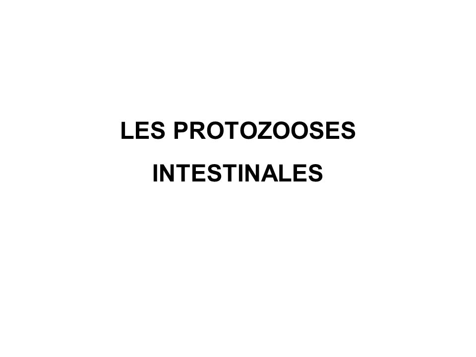 LES PROTOZOOSES INTESTINALES