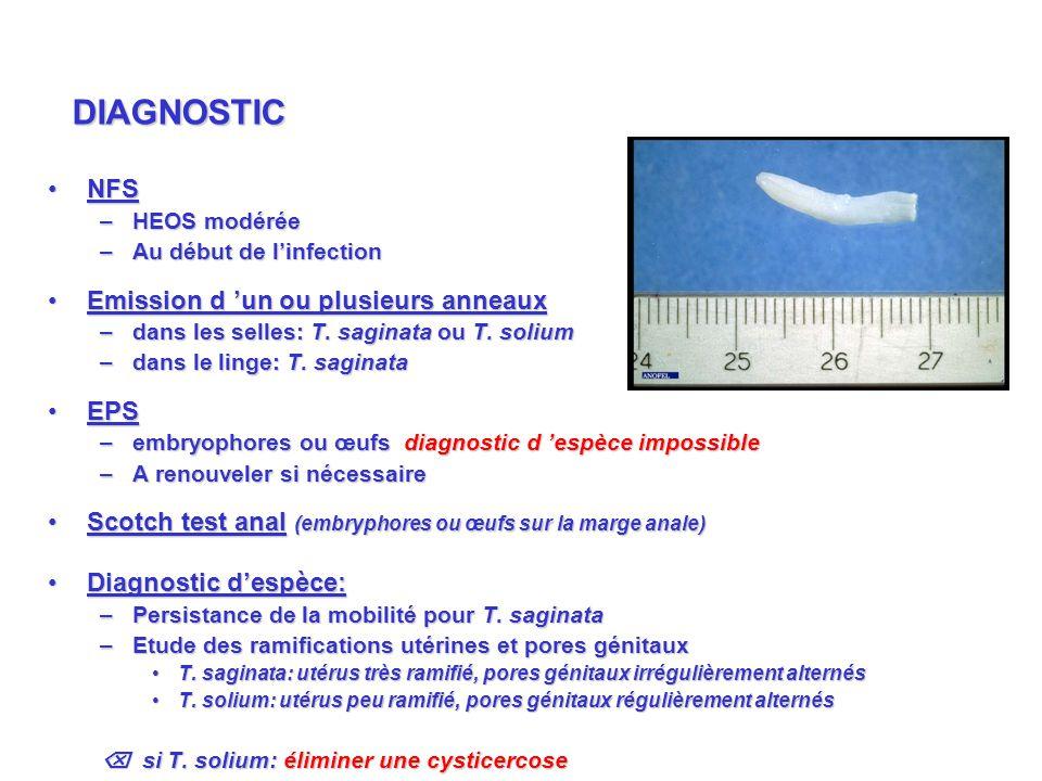 NFSNFS –HEOS modérée –Au début de linfection Emission d un ou plusieurs anneauxEmission d un ou plusieurs anneaux –dans les selles: T. saginata ou T.