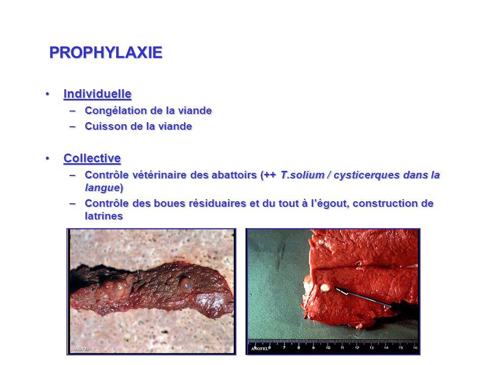 IndividuelleIndividuelle –Congélation de la viande –Cuisson de la viande CollectiveCollective –Contrôle vétérinaire des abattoirs (++ T.solium / cysti