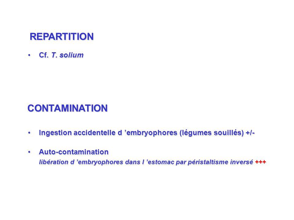 Cf. T. soliumCf. T. solium Ingestion accidentelle d embryophores (légumes souillés) +/-Ingestion accidentelle d embryophores (légumes souillés) +/- Au