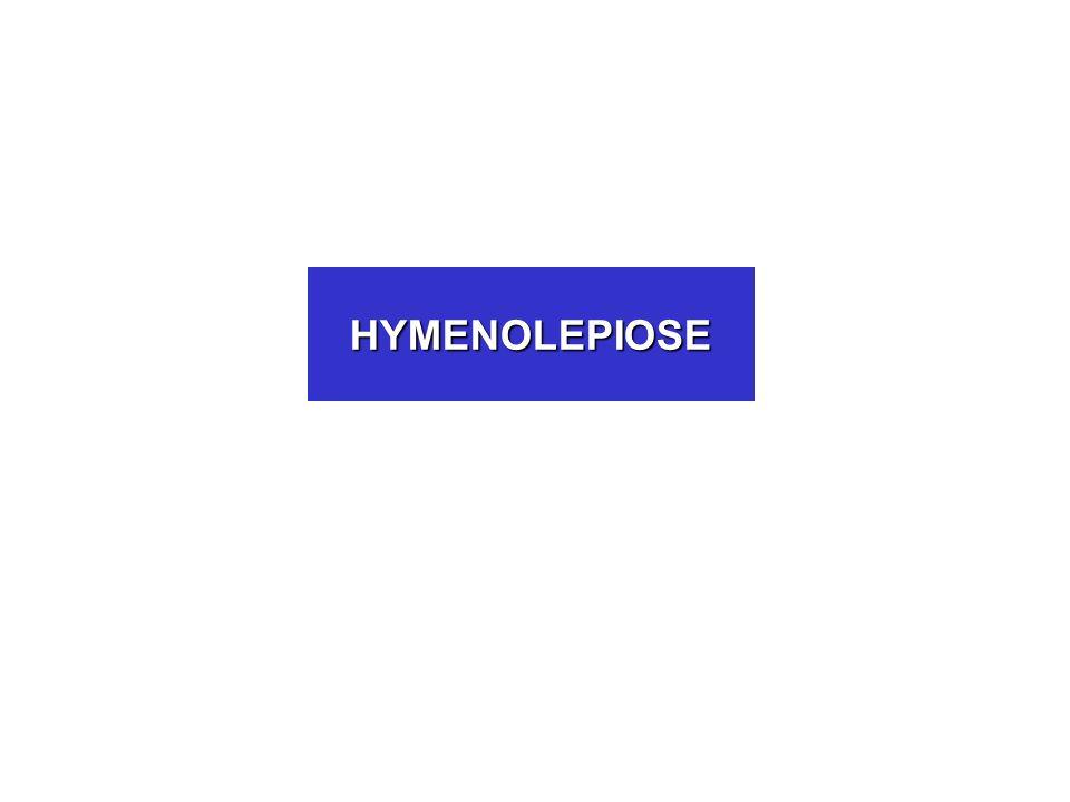HYMENOLEPIOSE