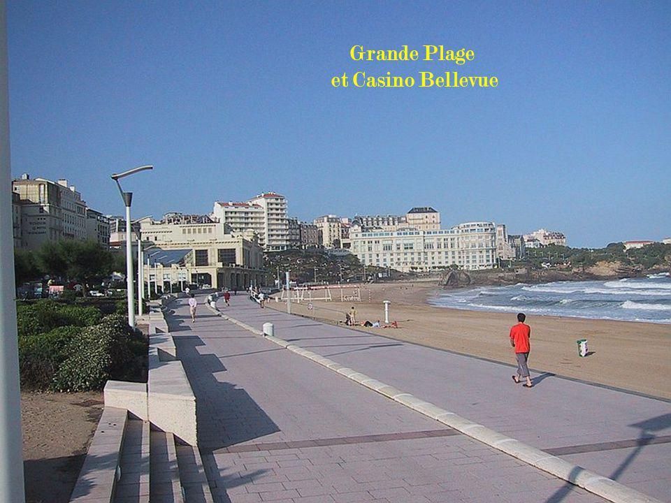 La grande plage Vue sur le Palais et le Phare