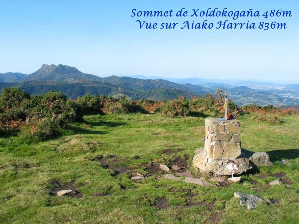 Vue sur Fontarrabie et Hendaye et Pottoks