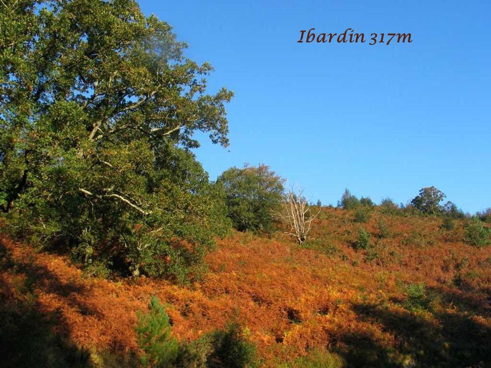Ibardin 317m