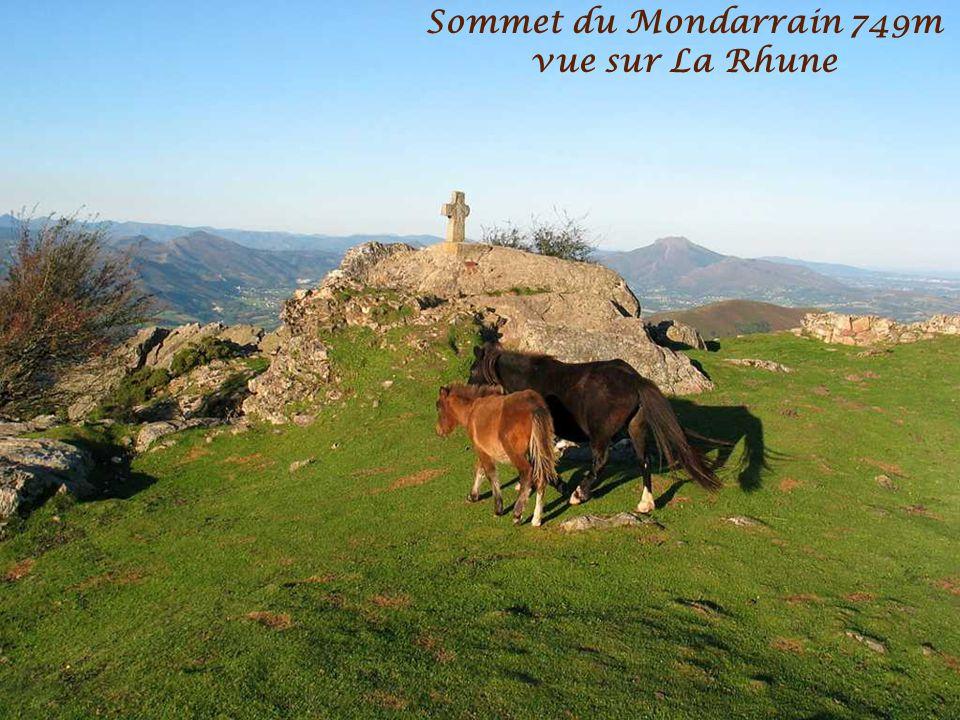 Vue sur La Rhune et St Jean de Luz