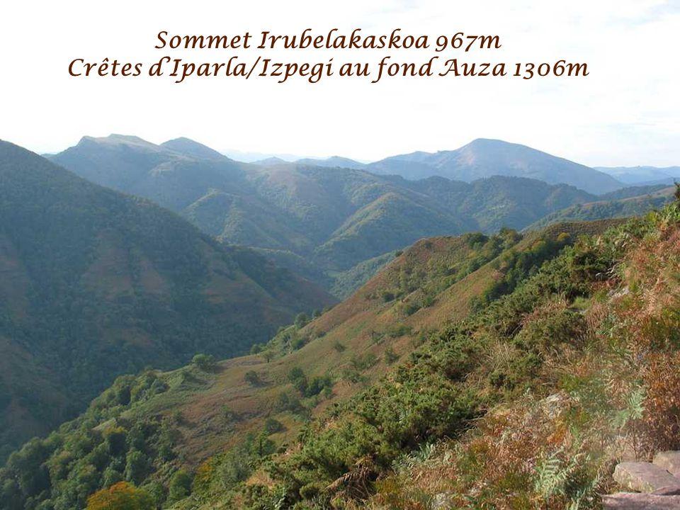 Sommet Irubelakaskoa 967m Au fond Auza 1306m