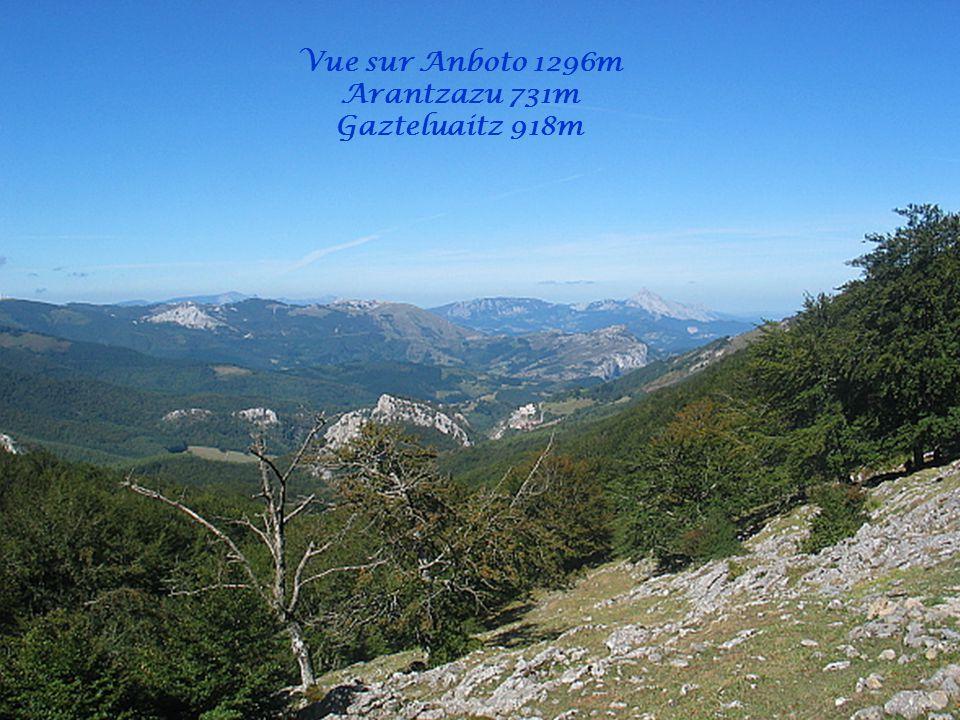 Vue sur Anboto 1296m Arantzazu 731m Gazteluaitz 918m