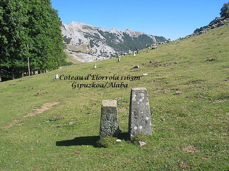 Coteau dElorrola 1163m Gipuzkoa/Alaba