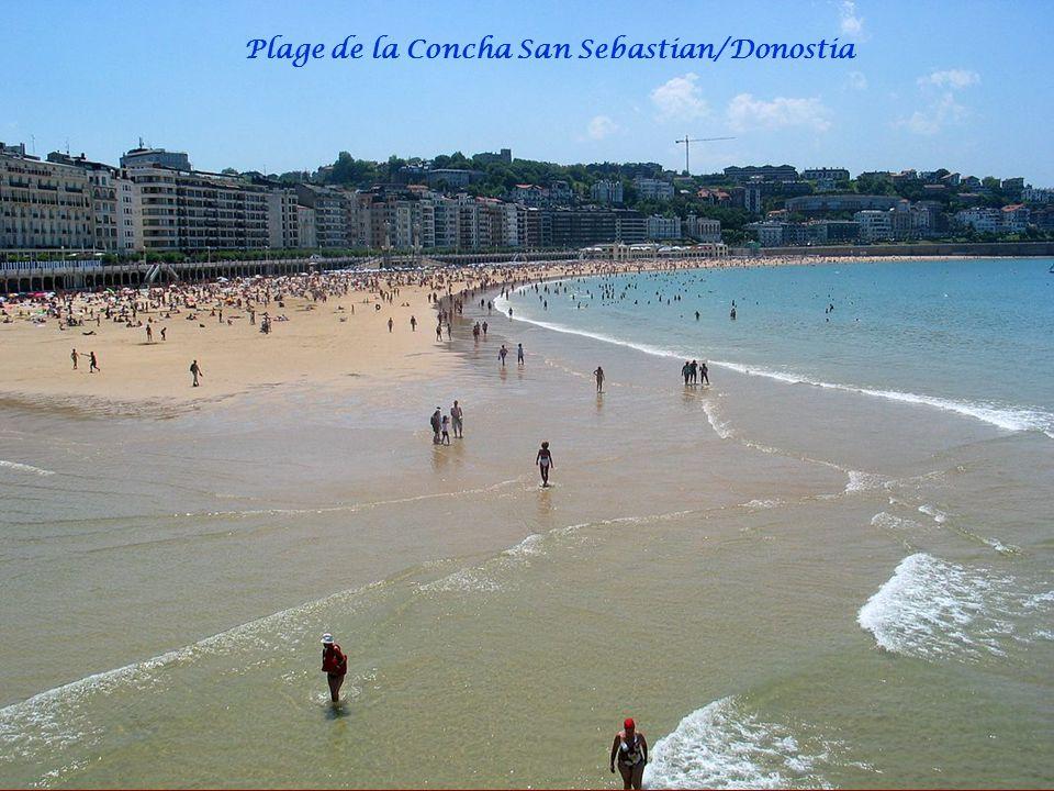 Baie San Sebastian/Donostia vue sur le Monte Igueldo et île Santa Clara