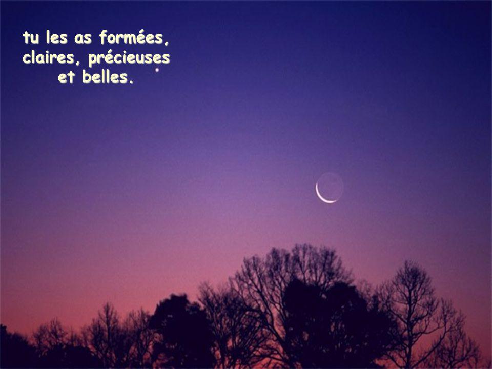 Loué sois-tu, Seigneur, pour notre soeur la lune et pour les étoiles dans le ciel ;