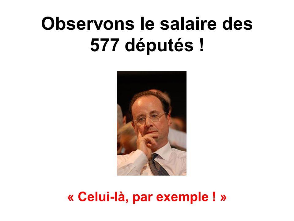 Observons le salaire des 577 députés ! « Celui-là, par exemple ! »