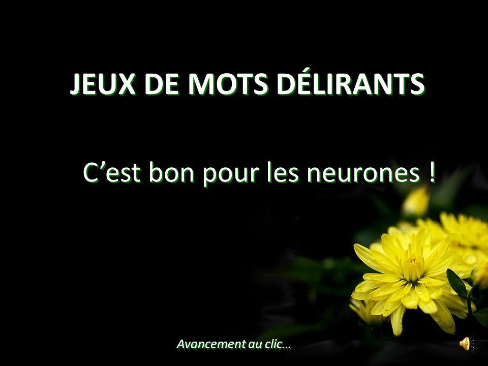 JEUX DE MOTS DÉLIRANTS Avancement au clic… Cest bon pour les neurones !