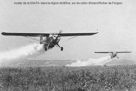 Auster de la SNATA dans la région de Bône, sur du coton (Roland Richer de Forges)