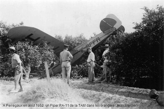 A Perrégaux en août 1952, un Piper PA-11 de la TAM dans les orangers (Jean Mercier)