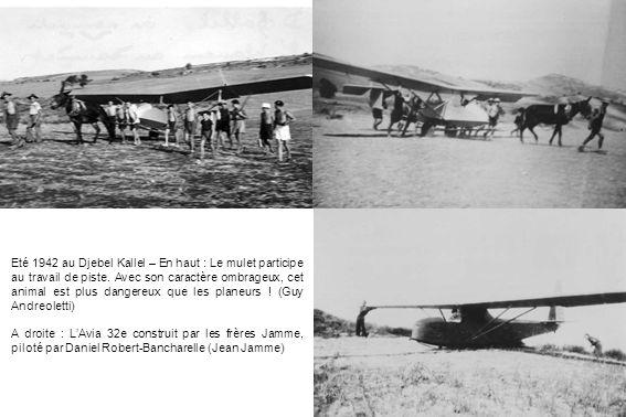 Eté 1942 au Djebel Kallel – En haut : Le mulet participe au travail de piste. Avec son caractère ombrageux, cet animal est plus dangereux que les plan