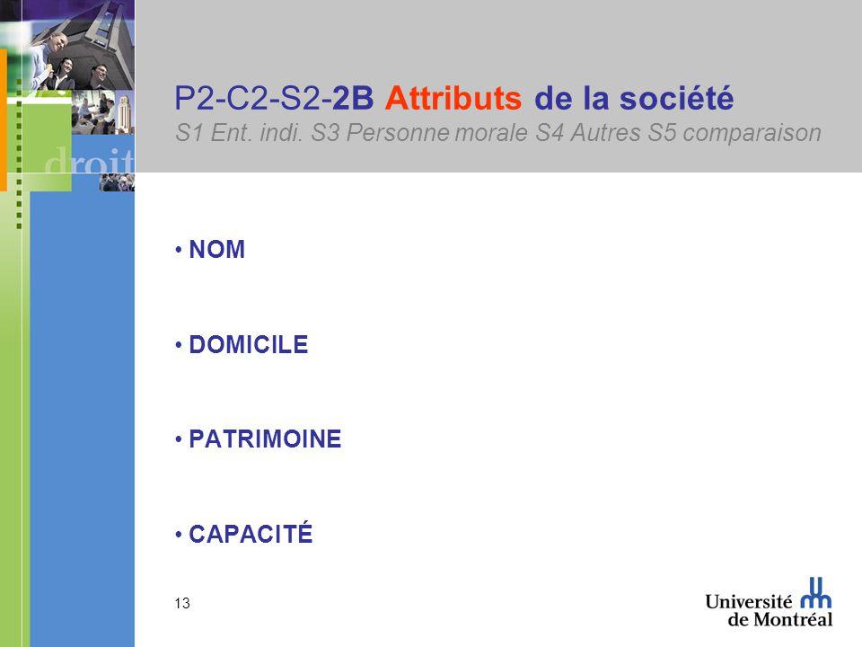 13 P2-C2-S2-2B Attributs de la société S1 Ent. indi.