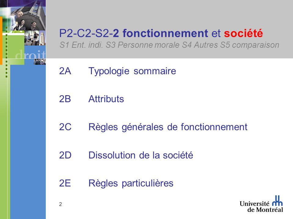 13 P2-C2-S2-2B Attributs de la société S1 Ent.indi.