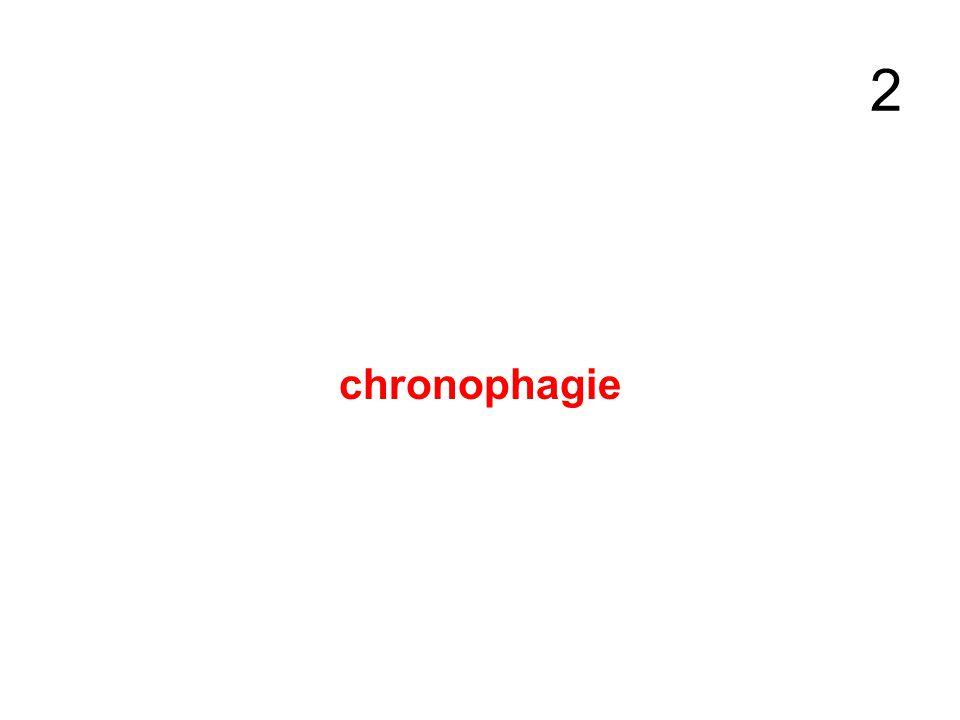 2 chronophagie