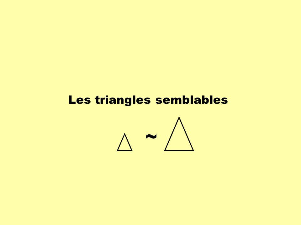 Les triangles semblables ~