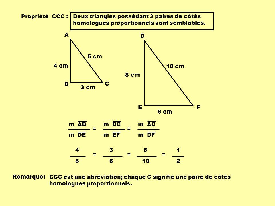 Propriété CCC : Deux triangles possédant 3 paires de côtés homologues proportionnels sont semblables. 3 cm 4 cm 5 cm A B C 6 cm 8 cm 10 cm D EF m AB m