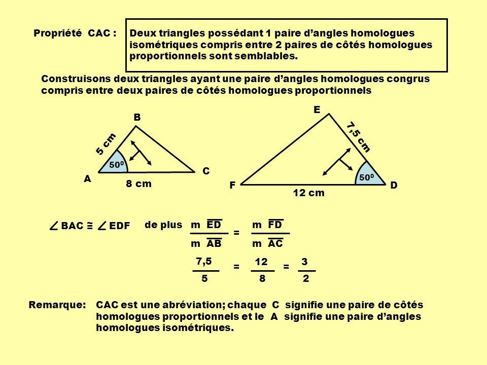 Propriété CAC : Deux triangles possédant 1 paire dangles homologues isométriques compris entre 2 paires de côtés homologues proportionnels sont sembla