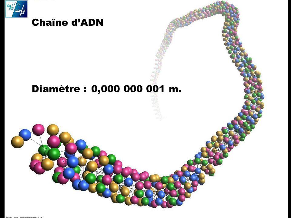 Chaîne dADN Diamètre : 0,000 000 001 m.
