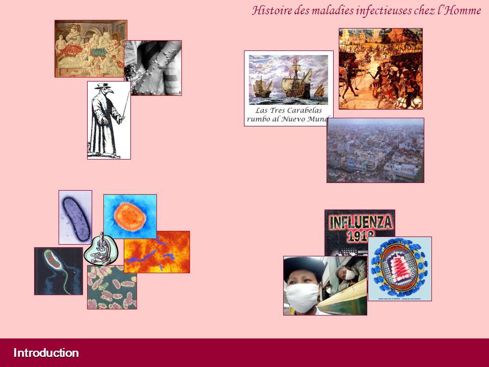 Introduction Histoire des maladies infectieuses chez lHomme