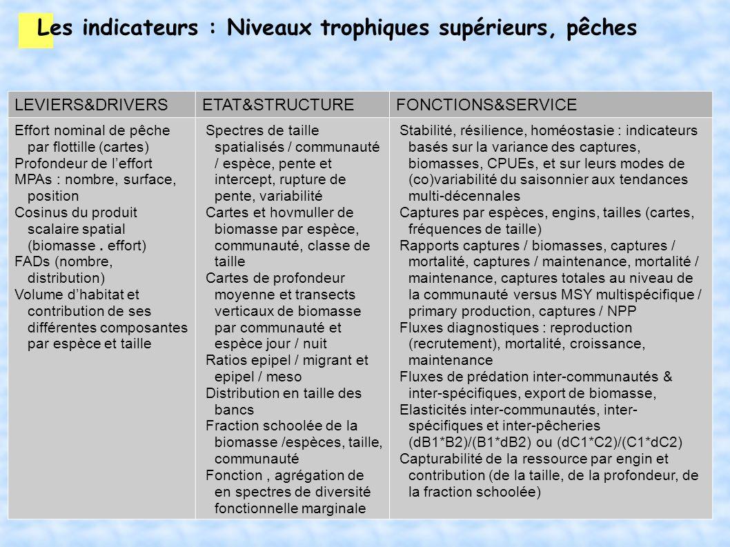 Les indicateurs : Niveaux trophiques supérieurs, pêches LEVIERS&DRIVERSETAT&STRUCTUREFONCTIONS&SERVICE Effort nominal de pêche par flottille (cartes)