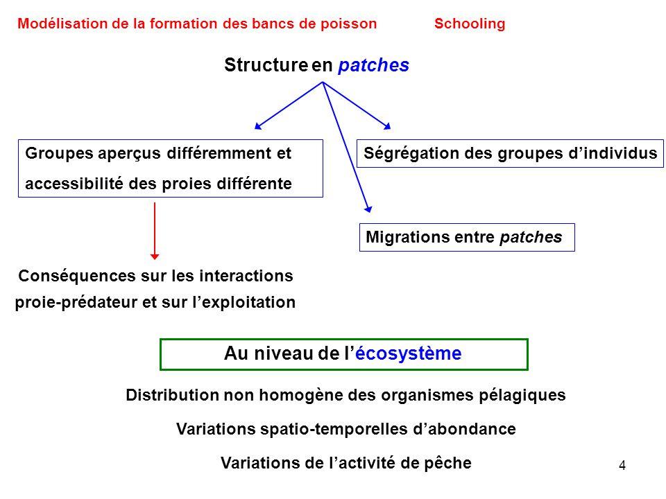 4 Modélisation de la formation des bancs de poissonSchooling Distribution non homogène des organismes pélagiques Variations spatio-temporelles dabonda