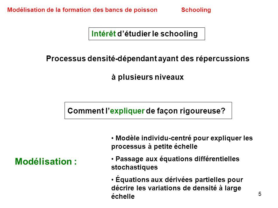 5 Modélisation de la formation des bancs de poissonSchooling Intérêt détudier le schooling Processus densité-dépendant ayant des répercussions à plusi