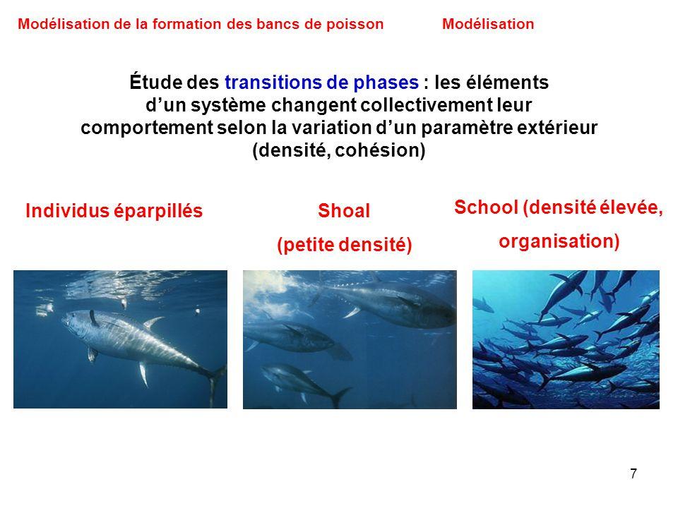 7 Modélisation de la formation des bancs de poissonModélisation Étude des transitions de phases : les éléments dun système changent collectivement leu