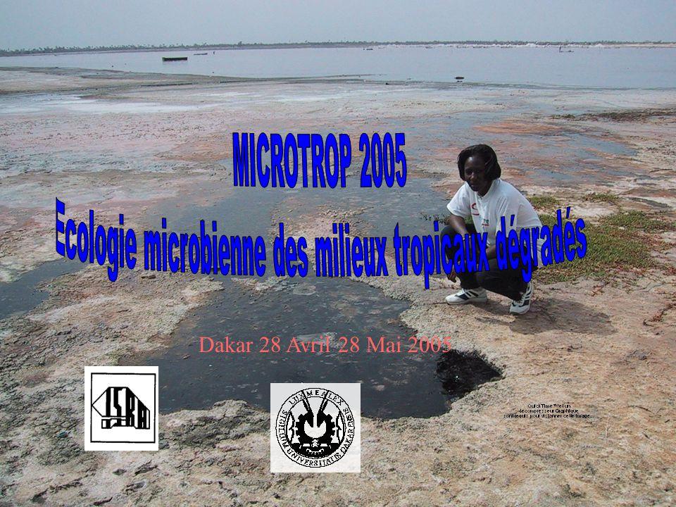 Dakar 28 Avril 28 Mai 2005