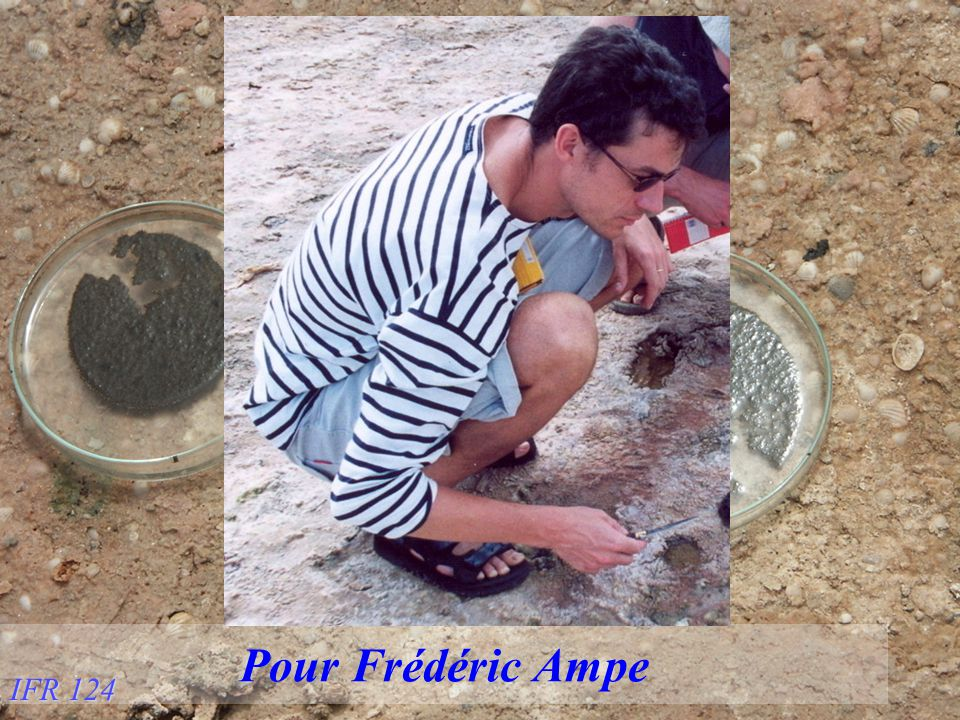 Pour Frédéric Ampe